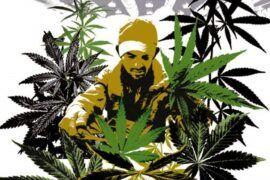Diccionario de marihuana
