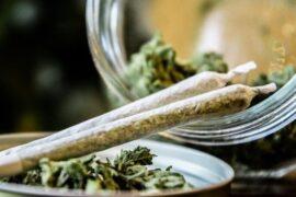 Es adicitiva la marihuana
