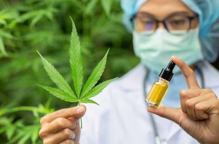 Marihuana para el tratamiento del cáncer