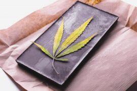 Variedades de marihuana para amantes del chocolate