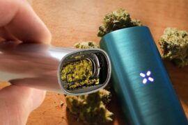 Temperaturas vaporización cannabis