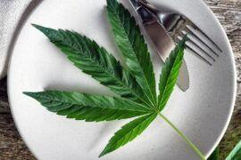 Libros de cocina con marihuana