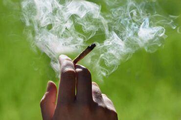 Cuánto tiempo permanece la marihuana en tu sistema