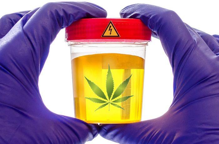 Test de marihuana