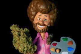 Conejos consumo marihuana